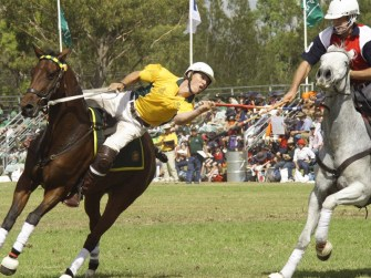 New South Wales Polocrosse Team